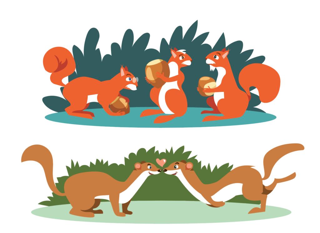 illustration ecureuil et fouines
